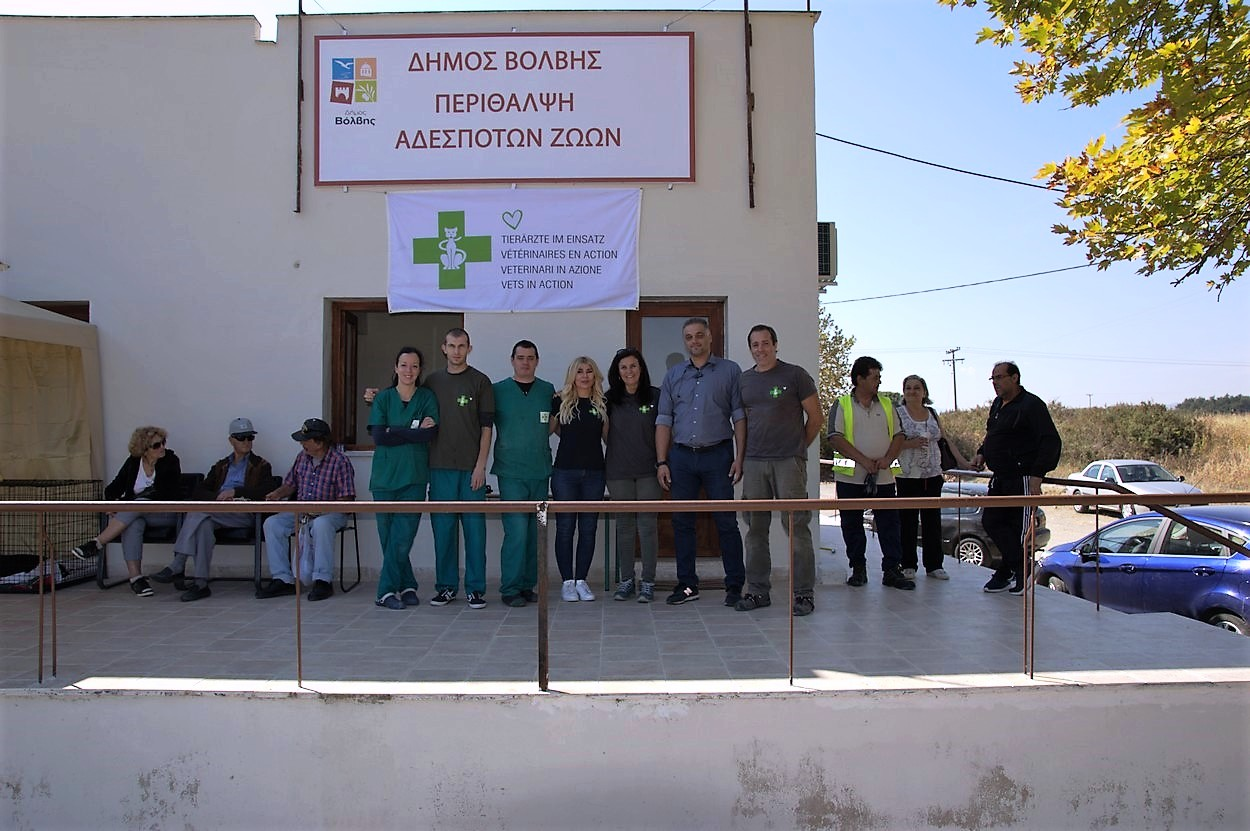 Εμβολιασμός και περίθαλψη 370 αδέσποτων ζώων