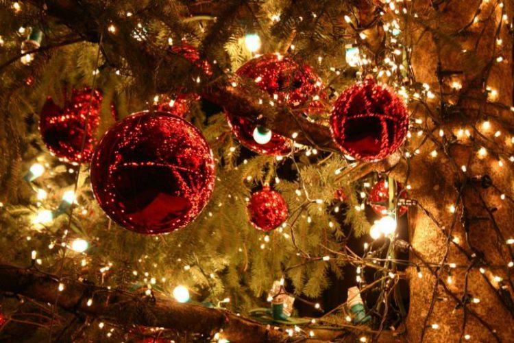 ΔΗΠΕΘΕ Καβάλας: «Το μονοπάτι των Χριστουγέννων προς τη νύχτα των ευχών»