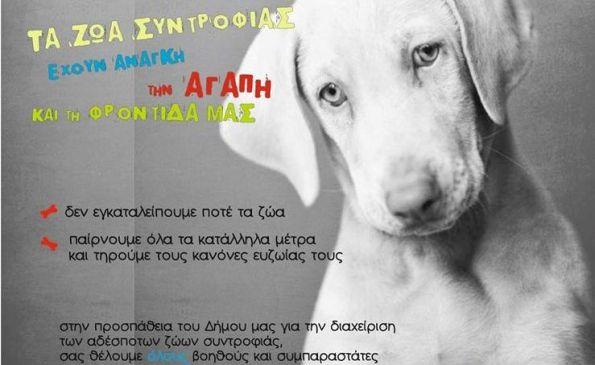 Ενημερωτική καμπάνια του Δήμου Ρήγα Φεραίου σε μαθητές για τα ζώα