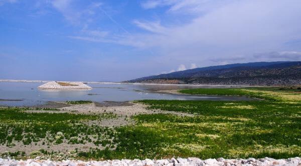 Παραχώρηση δημόσιων εκτάσεων περιμετρικά της λίμνης Κάρλα σε αγρότες