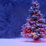 Πρόγραμμα εορταστικών εκδηλώσεων στον Δήμο Άργους Ορεστικού