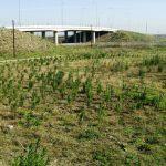 Πρόσκληση για Προμήθεια υλικών αρδευτικών συστημάτων του Δήμου Καστοριάς