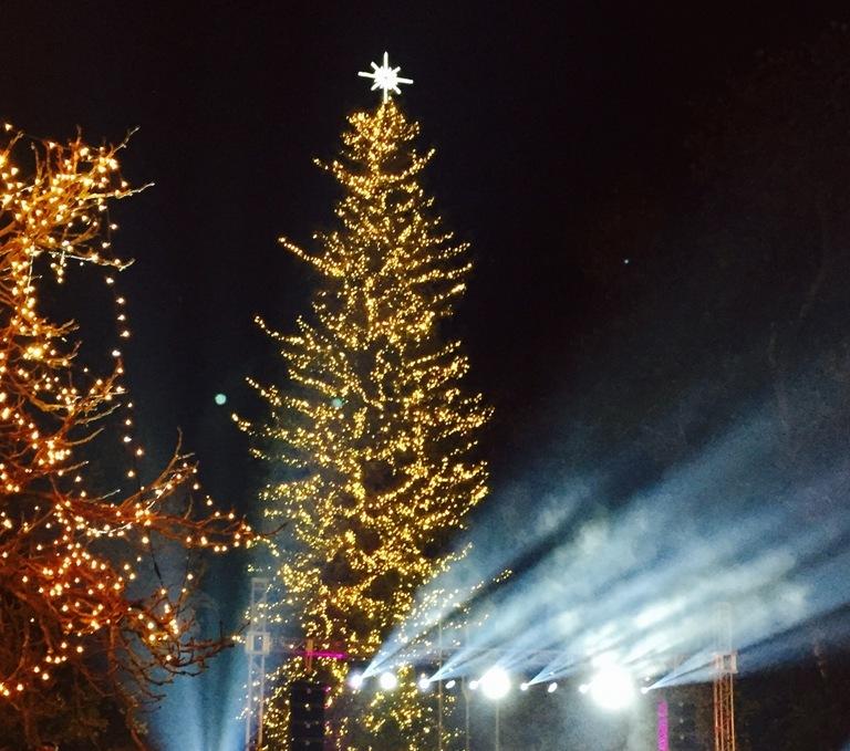 Ο Ταξιάρχης Χαλκιδικής «ανάβει» το πρώτο χριστουγεννιάτικο δέντρο της Ελλάδας